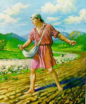 Parable of the Sower: The Challenges of Sponsorship - Big